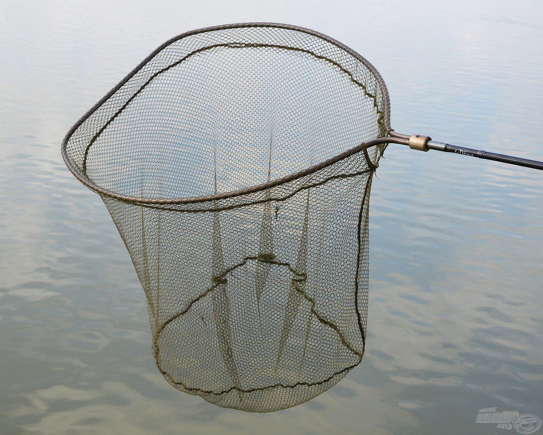 Amennyiben igazán kapitális halakra pályázunk, akkor ilyen gigantikus méretű fejben érdemes gondolkodni