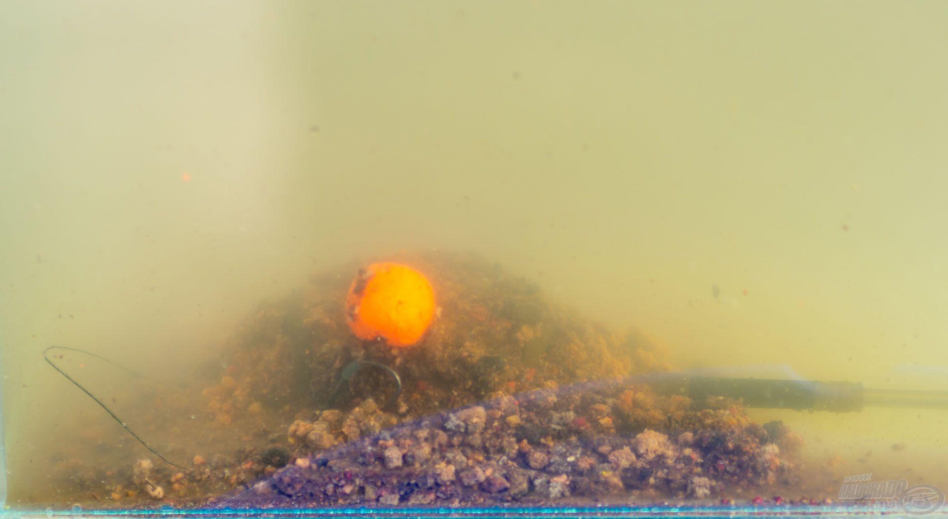 A zavaros vízben is jól látható, optimális felhajtóerejű, folyamatosan oldódó és könnyen felszippantható csali