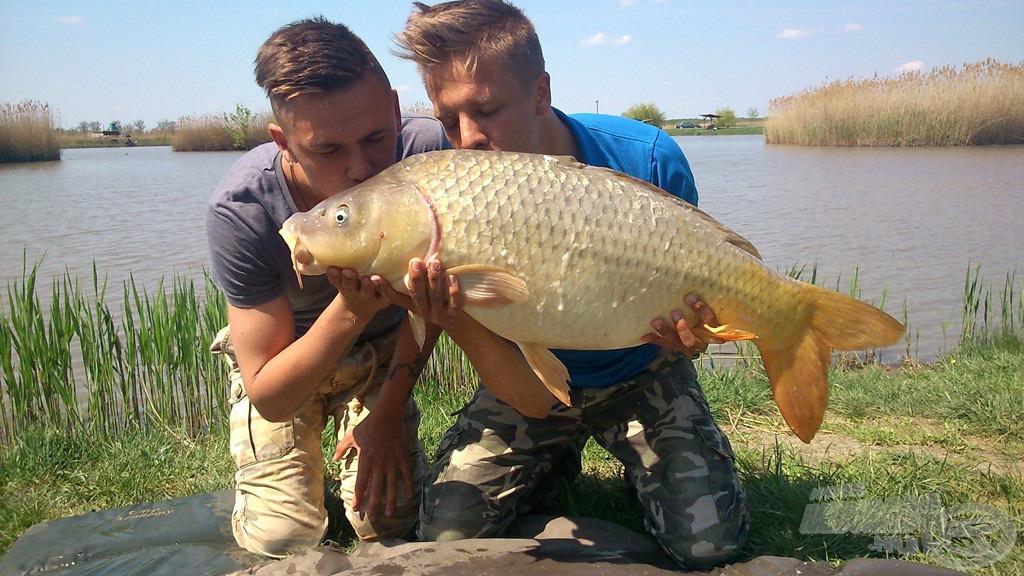Tiszteljük, szeretjük a halat - bár mindenki így gondolkozna. A gyönyörű ponty súlya: 12,60 kg. Örömünk leírhatatlan volt