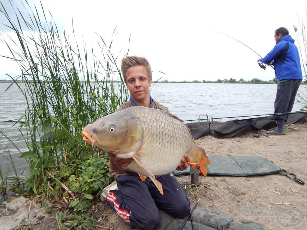 Remekül mutatja ez a kép, mennyire tudtuk húzni a halat. Miközben Attila a háttérben fáraszt, a túra pontya volt a kezemben a maga 13,05 kg-os súlyával. Ő sem bírt ellenállni a Fluo SpéciCornnak