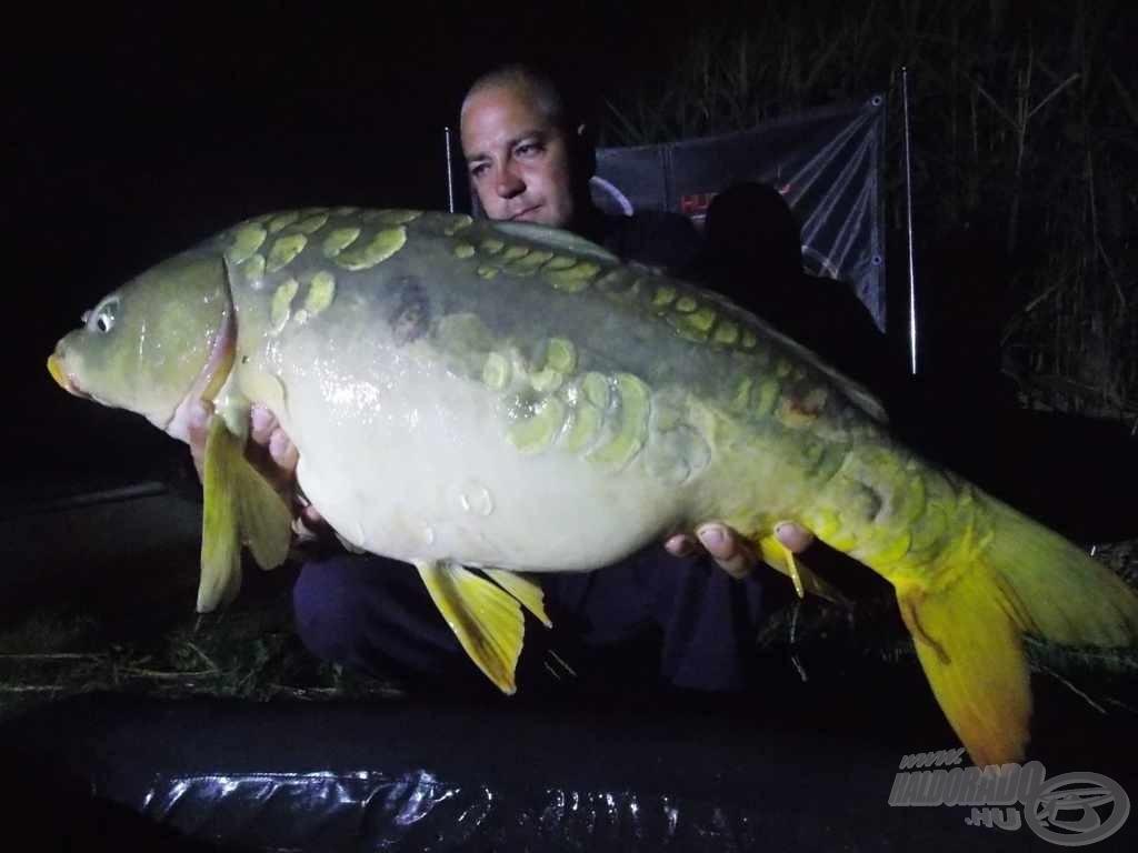 A túra legnagyobbja, egy szépséges spanyol ponty (12,80 kg)