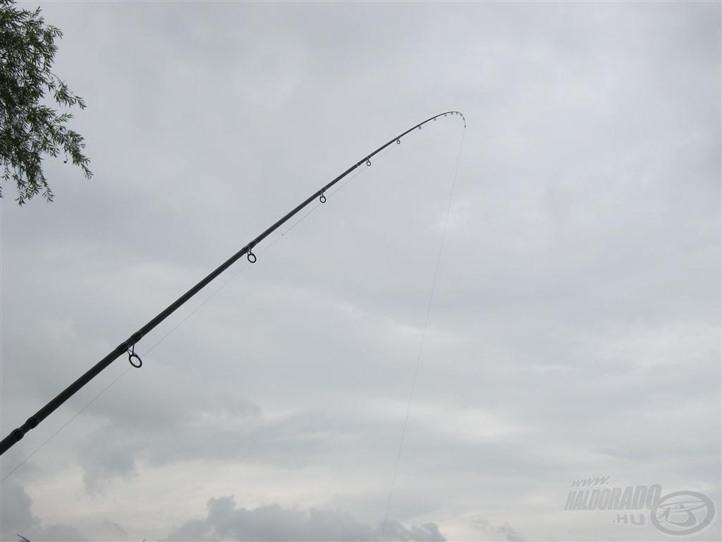 A hal minden rezdülését lekövette az érzékeny botvég