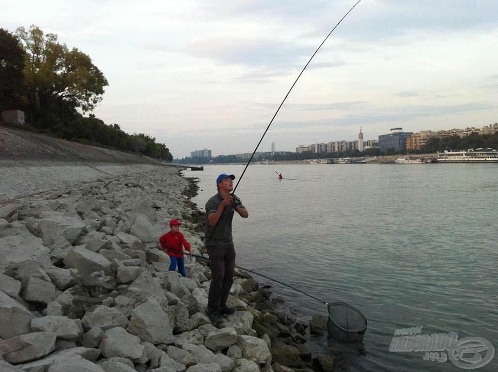 Ekkor még csak gyanakodtunk. A hosszú merítő nyél miatt nyugodtabb voltam a parton. Nem izgultam amiatt, hogy a fiam beleesik a vízbe