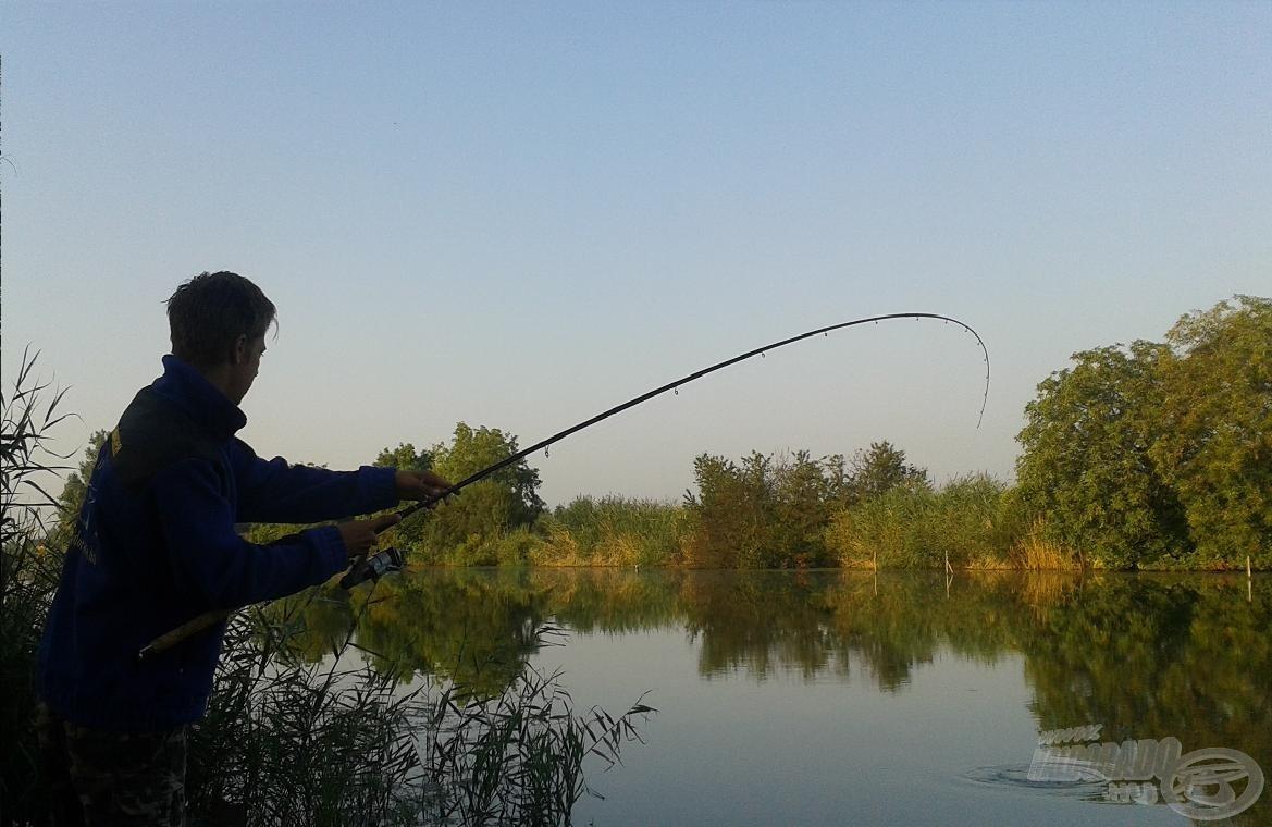 Szabályosan felrobbantotta a vizet a hajnal első hala, élmény a fárasztás minden pillanata