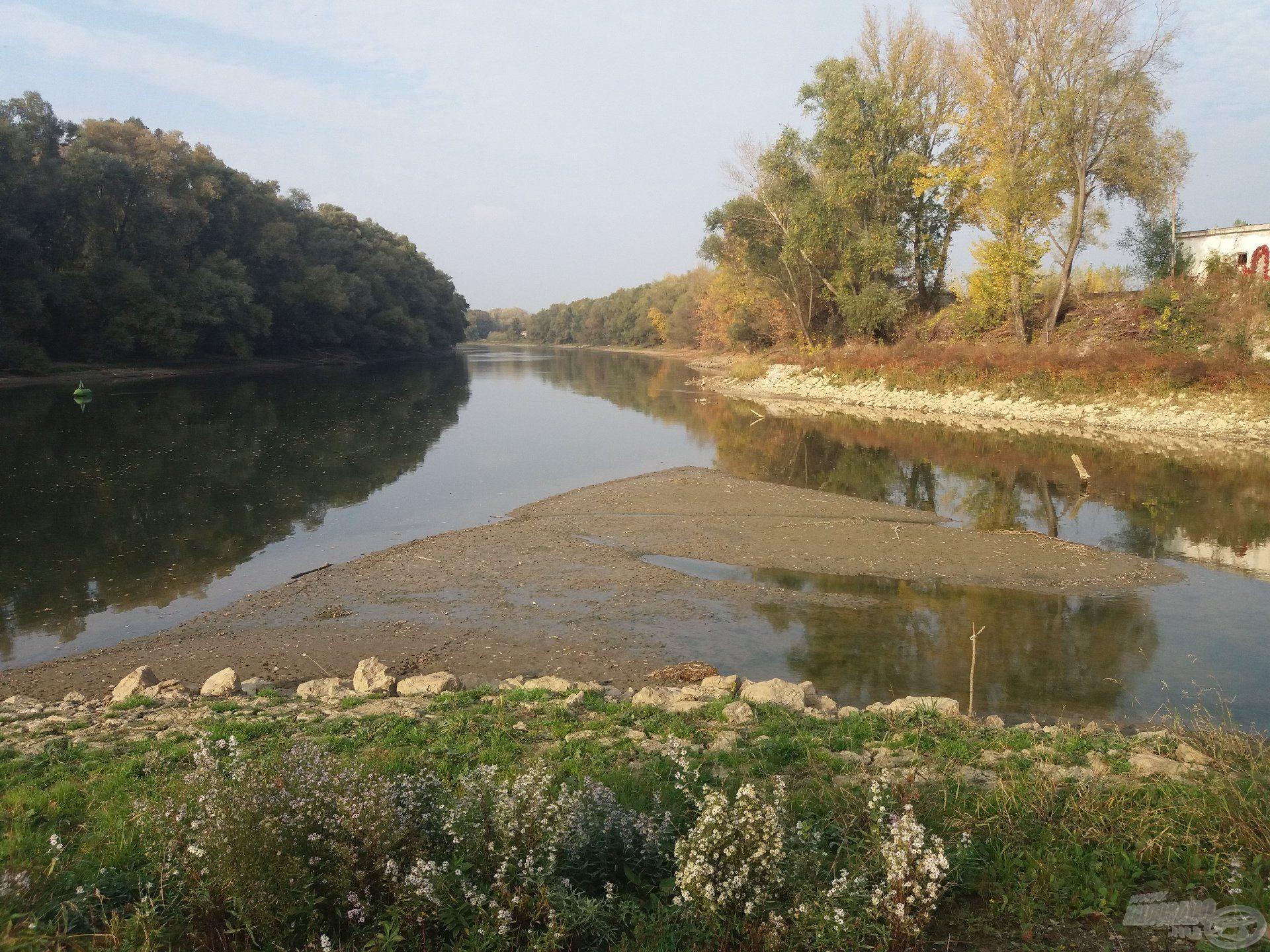 A Duna vízállása a béka segge alatt