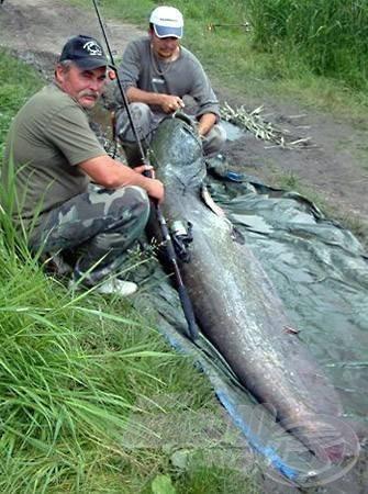 A 81,25 kg-os harcsa tó- és egyben országos rekord is volt 2006-ban!