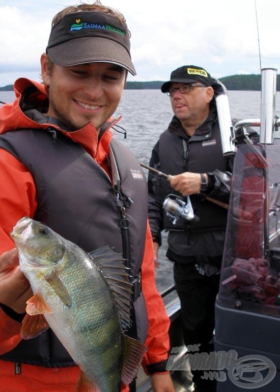 Horgászkísérőnk gyönyörű sügére