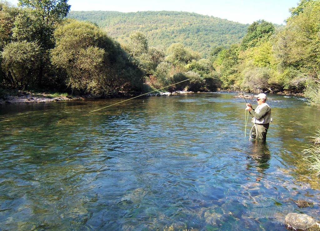 Halam a folyó közepén, az erős sodrásban fárasztja magát…