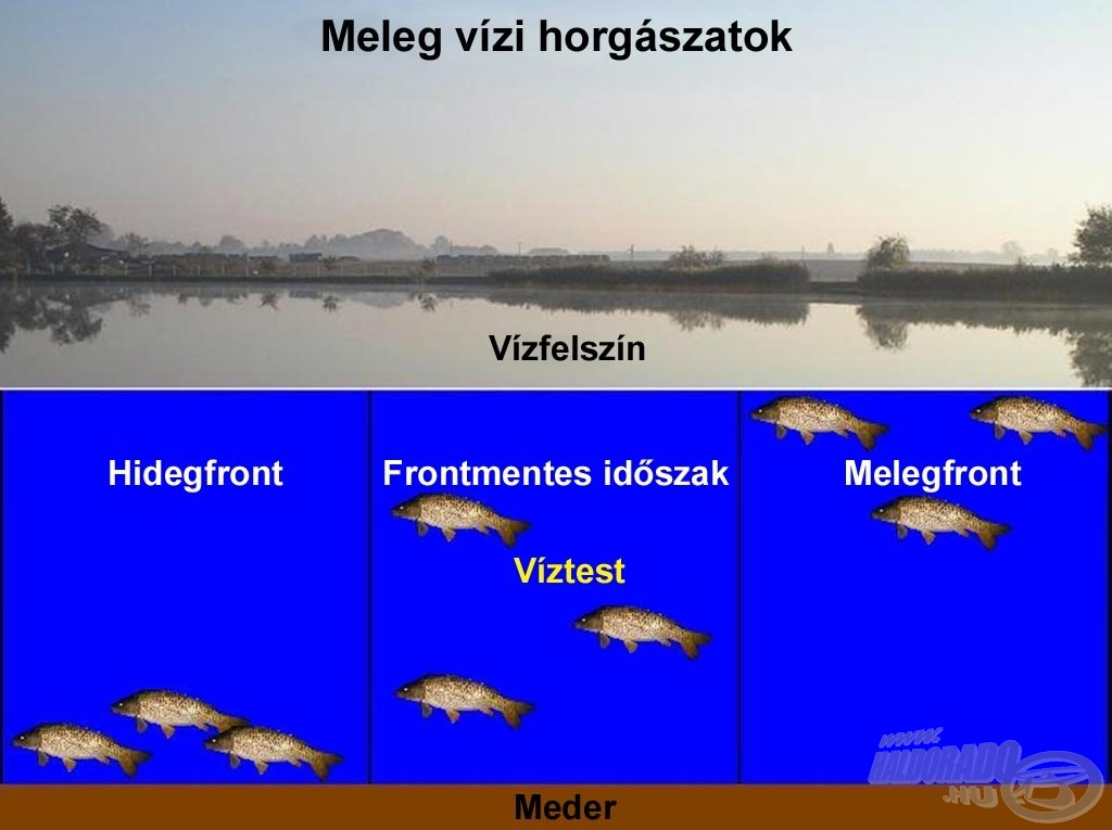 """""""Elképzelés generátor"""" a meleg vízi horgászatokhoz"""