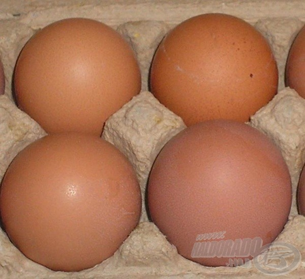 Tojásból a mixünk pontosan 8 darabot fog felvenni. Amennyiben egy szénhidrátosabb jellegű etetőanyagot választunk a recept alapjául (pl. az Édes Ananászt), akkor 6-7 tojás használata is elegendő lesz (1 kg mixhez)