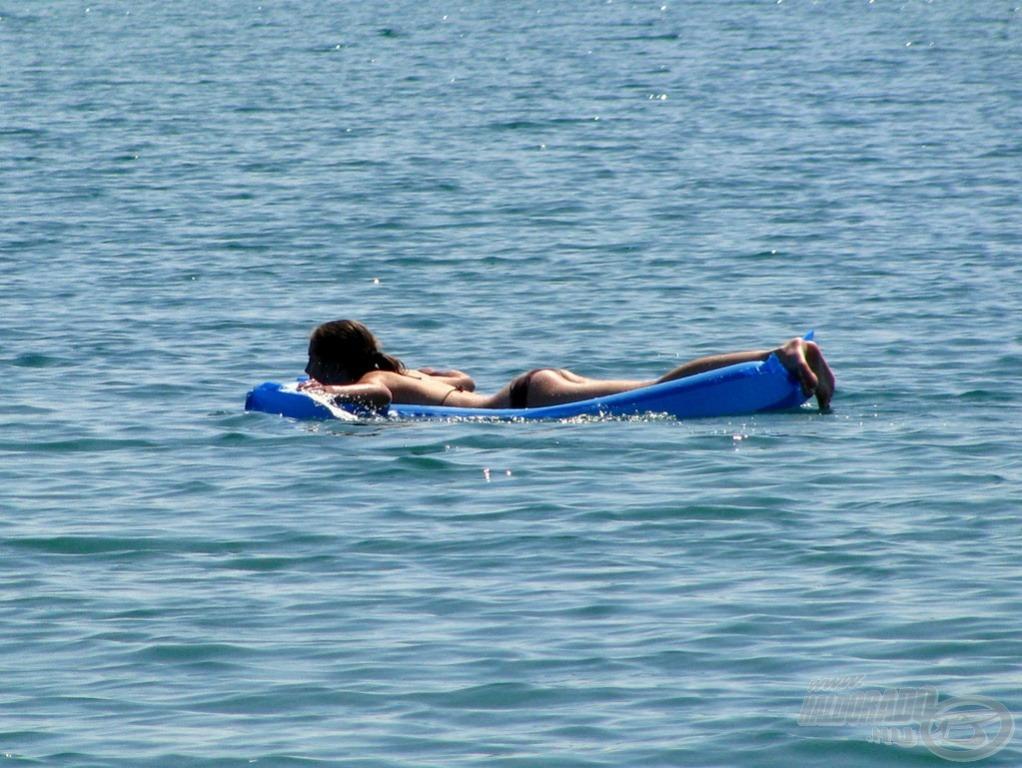 Nem csak az úszót figyeltük… :)