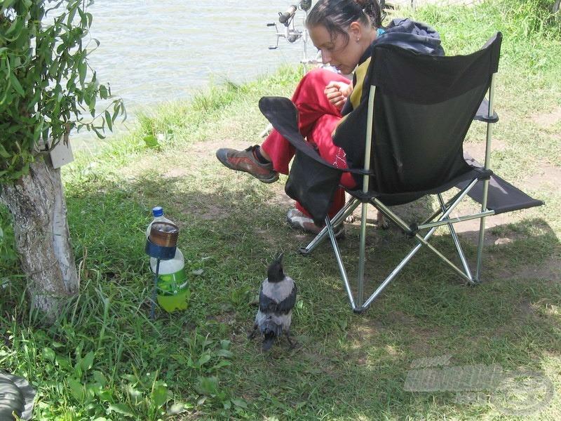 Nekem te ne mond meg, hogyan kell horgászni!