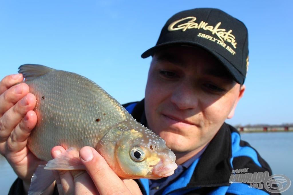 Spiccbottal nem csak apró halakra…!