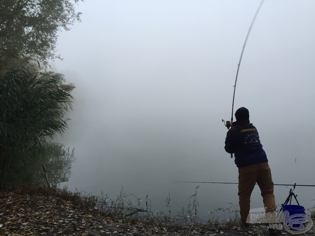 … mint pontosan bejuttatni a halak számára