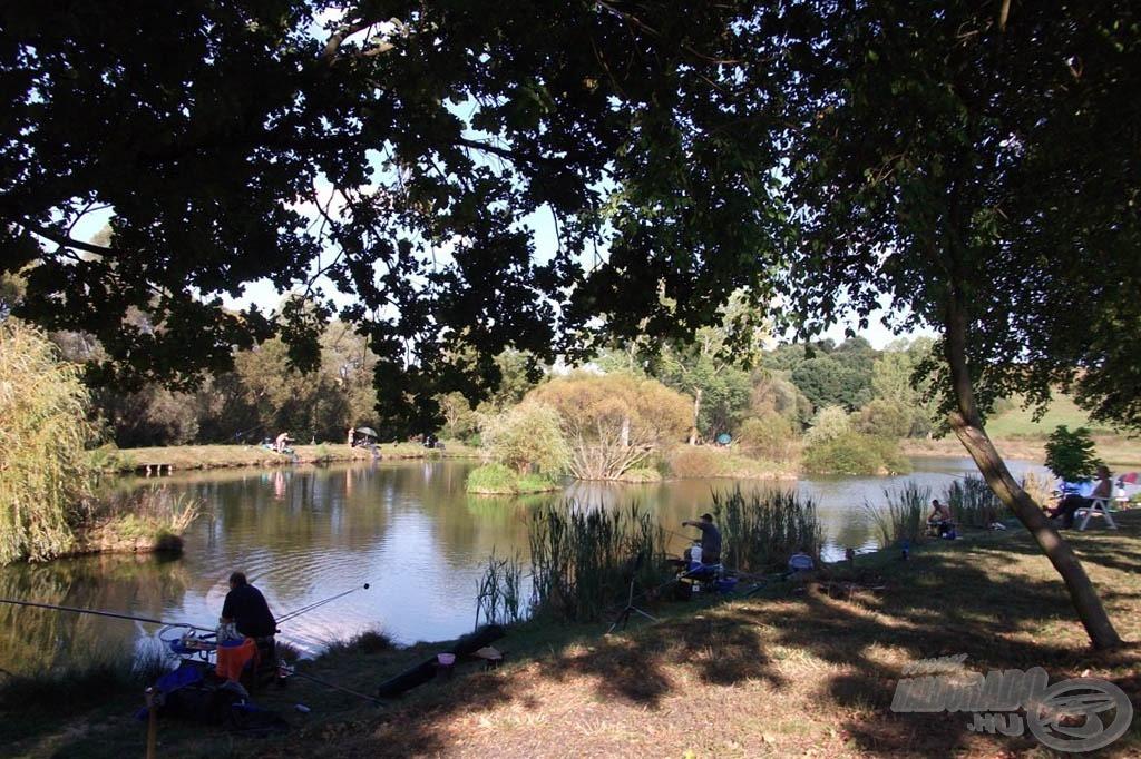 Nézsai Ezersziget horgásztó: gyönyörű környezet, tömérdek hal…