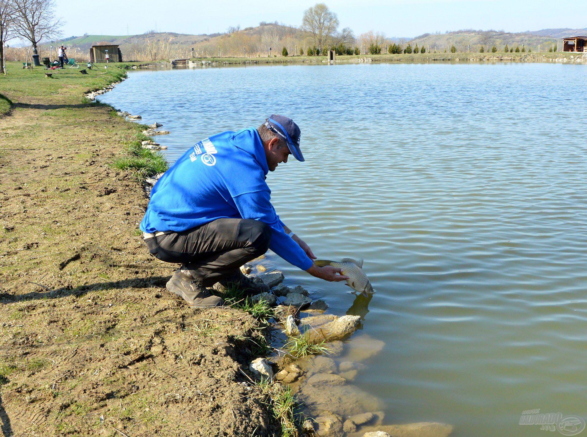 Virgonc kis halacskák lakják a Sárisápi Horgásztavat!