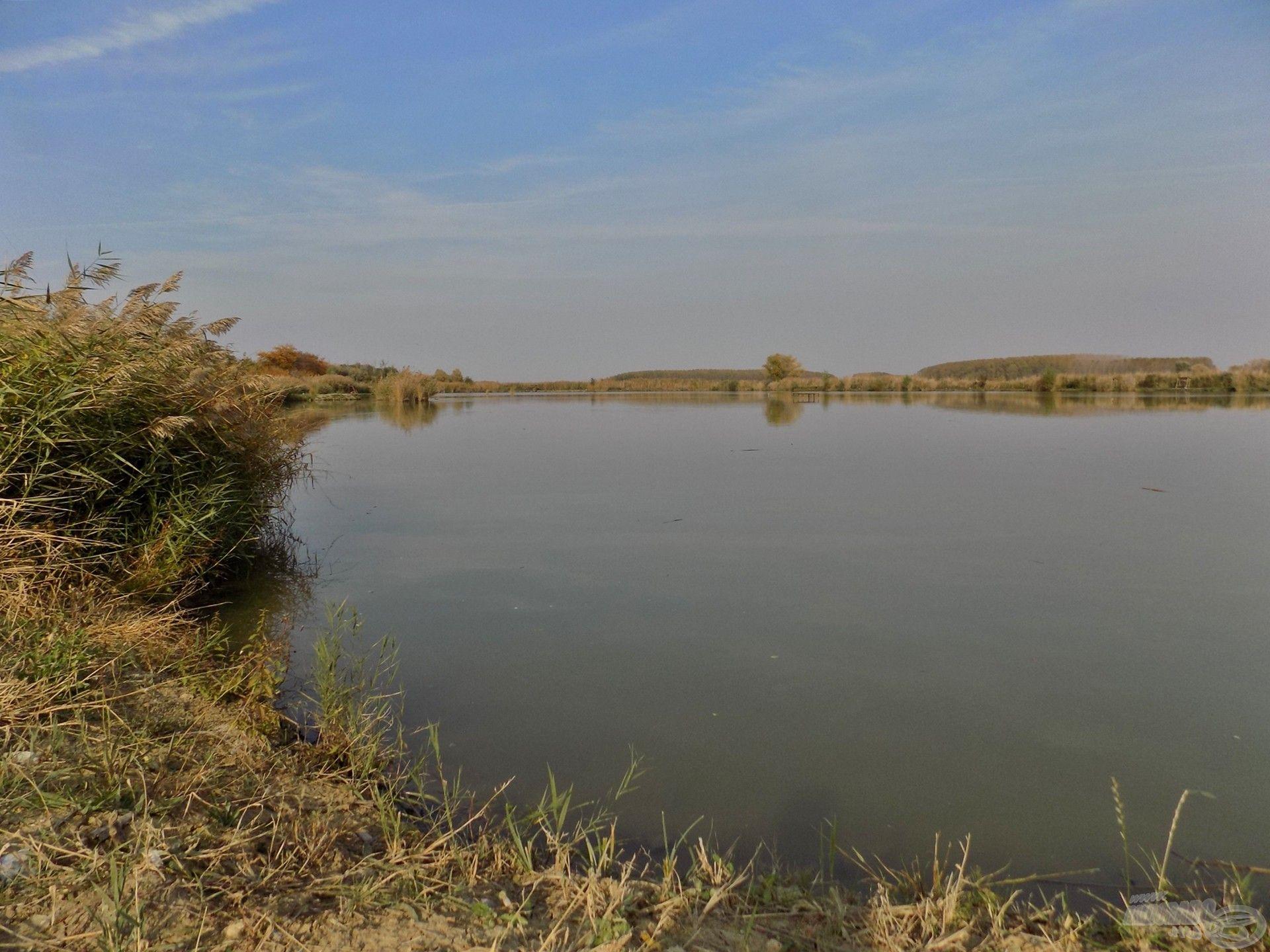 Az 5 hektár területű Millér Horgásztó egy nagyszerűen halasított horgászvíz, a feederbotos horgászat szerelmeseinek maximálisan ideális választás lehet az év bármely időszakában