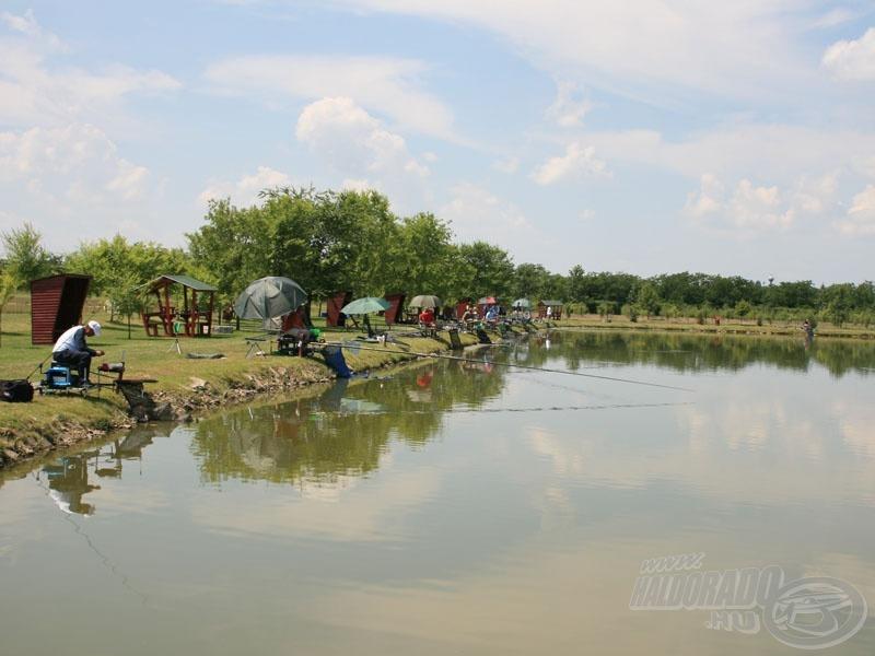 Az úszós szektorok nehéz feladat elé állították a horgászokat
