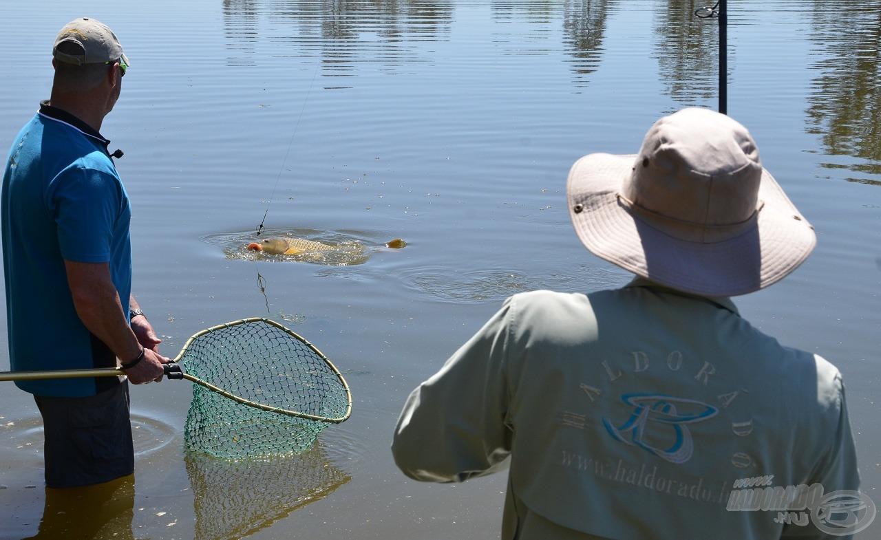 Én fárasztok, Schalk meríti a pár órás horgászat legszebb halát
