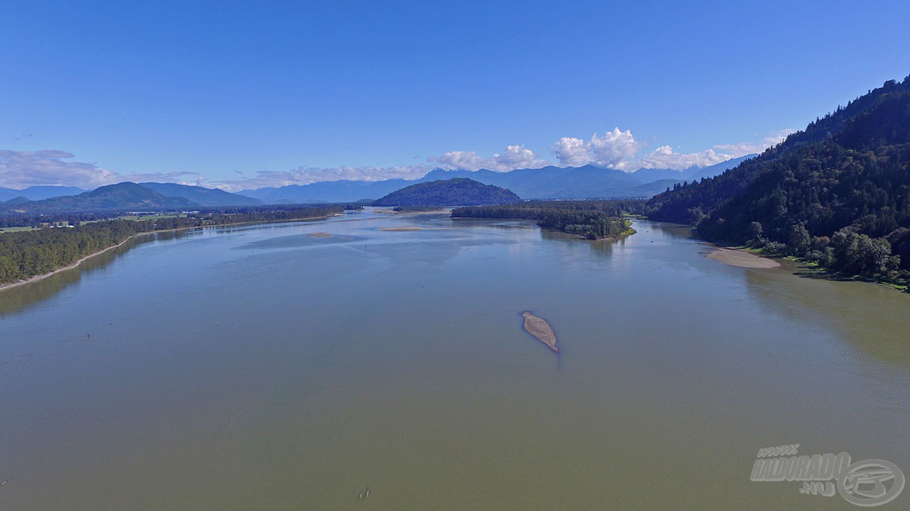 A kanadai Fraser folyó a világ egyik leghíresebb folyója, amely a fehér tokhalnak és 5 lazacfajnak is ideális életteret kínál