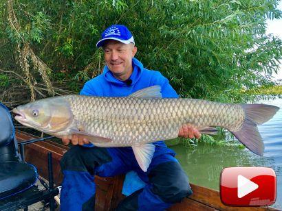 Vadvízi kalandok 36. rész – Tiszai amurozás csónakból