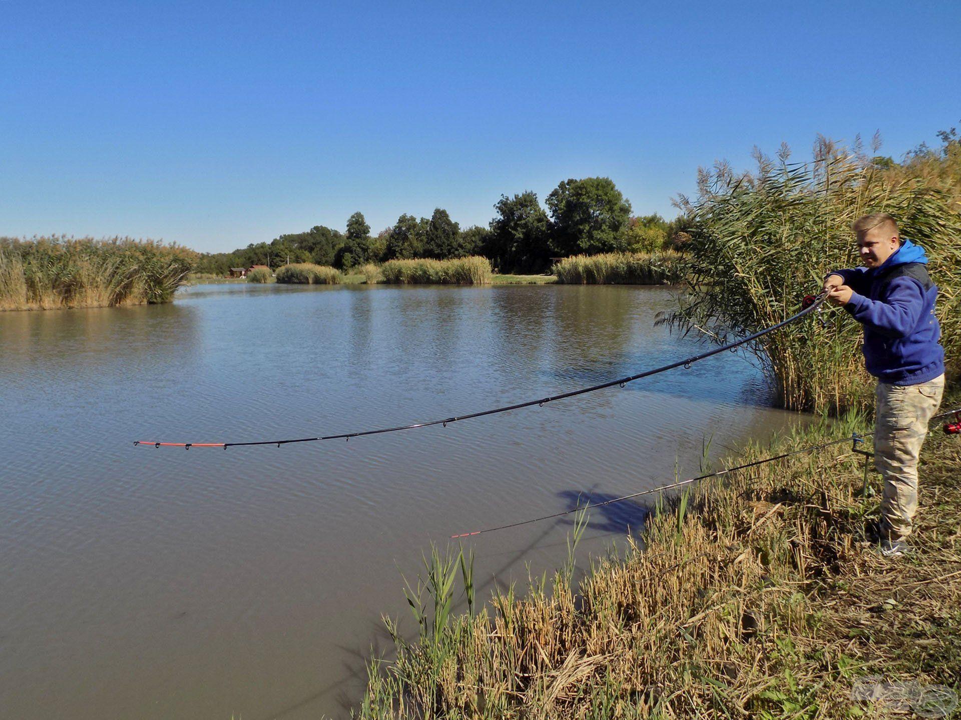 … majd fárasztani a tó remek erőben lévő pontyait. By Döme - Master Carp Pro Heavy feederbotjaim minden esetben a helyzet magaslatán álltak, legyen szó bármekkora halról!