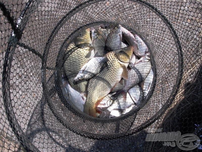 Ezért (is) érdemes itt horgászni