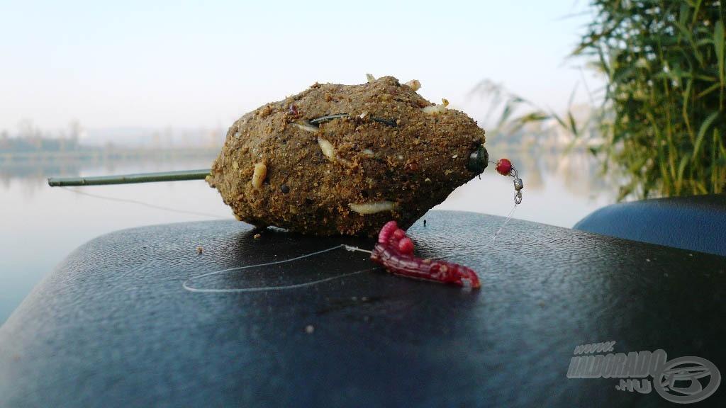 Őszi halcsemege