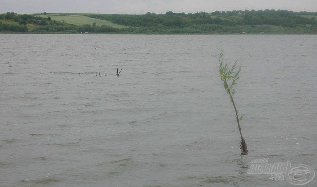 A szél miatt nem volt könnyű pontosan célozni az akadók mellé, ahol a kárászok tanyáztak