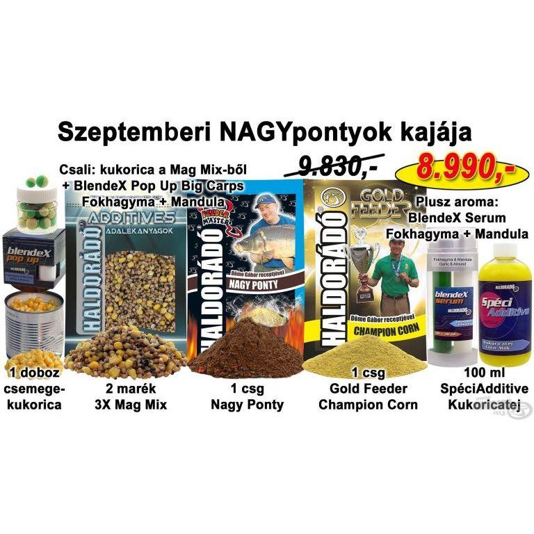 HALDORÁDÓ Őszi recept 3 - Szeptemberi NAGYpontyok kajája
