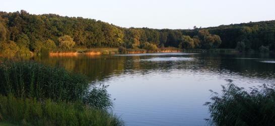 Hévizi horgásztó - Galgahévíz