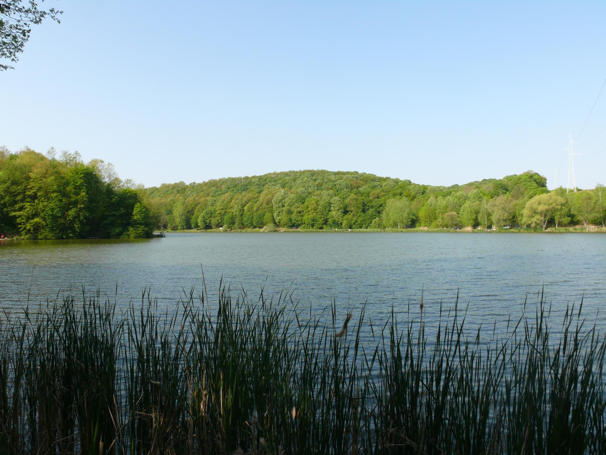 Töröcskei tó